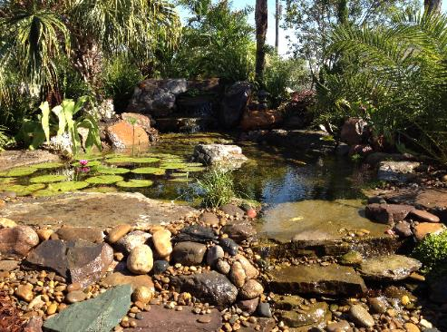 Pond shop pond supplies outdoor water features ponds for Do it yourself koi pond